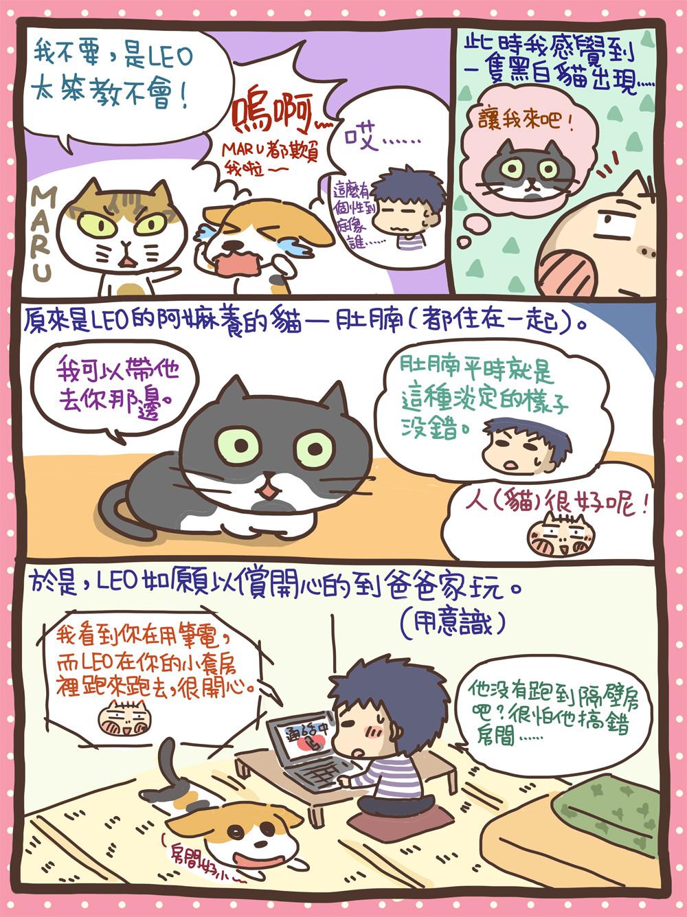 ▲寵物溝通Leo(圖/阿油AYO繪製提供,請勿任意翻拍,以免侵權)