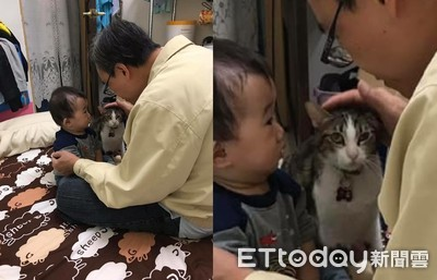 一張照兩樣情!男嬰認真聽貓臭臉