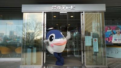 魚生不容易!台灣吉祥物「魚頭君」日本出道 上節目擺動魚鰭熱舞