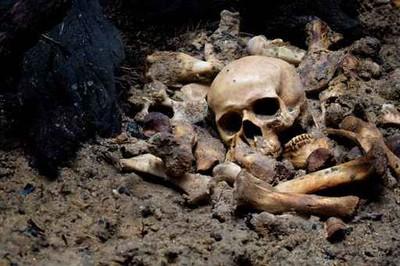 綠色葬禮 華盛頓州推「人屍做堆肥」