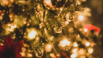 男乳頭夾滿聖誕燈炮 電死房內