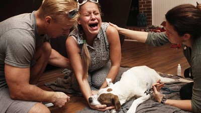抱著牠直到斷氣…攝影師拍下「寵物安樂死瞬間」飼主撫屍哭斷腸