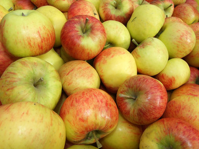 蘋果上為什麼有貼紙?專家揭真相!