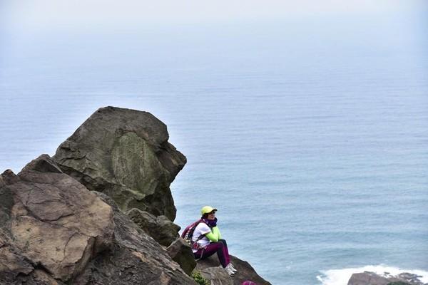 ▲金瓜石驚見「拉布拉多岩」,照片一PO出後,不少網友驚呼:好像喔。(圖/網友鄧惠珍提供,以下皆同)