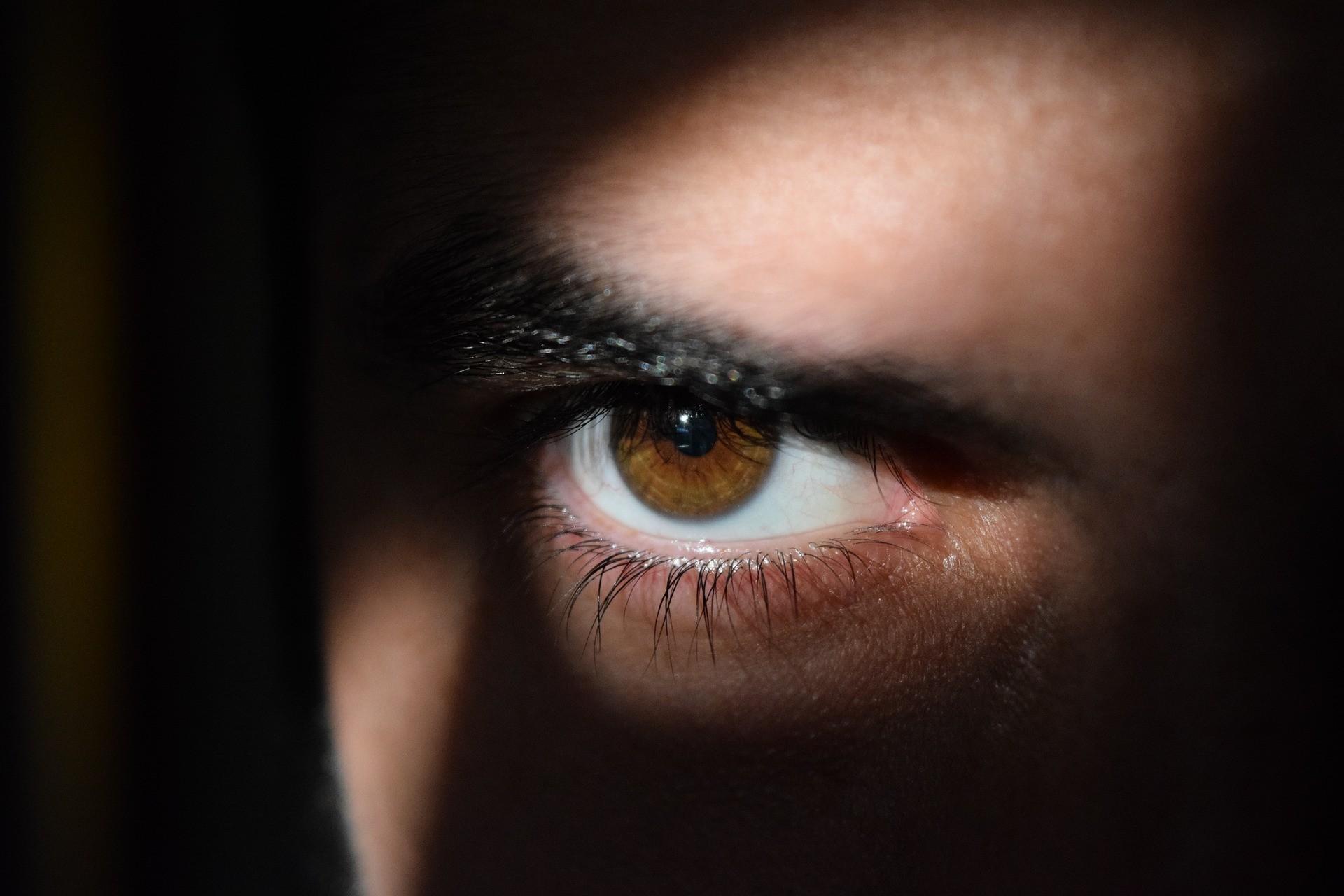 ▲監視  。(圖/取自免費圖庫pixabay)