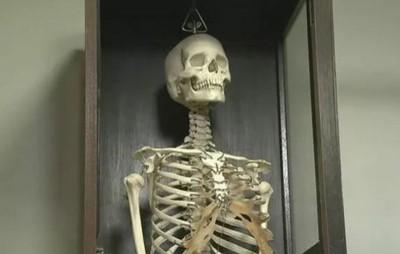 素描課用真人頭骨! 日本9所高中再爆「整具骨架」盯全班上課