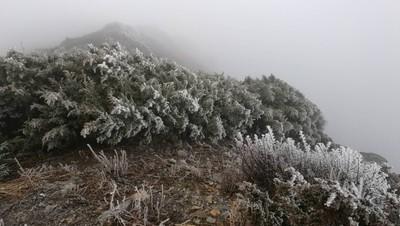 玉山初雪大遲到 破最晚下雪紀錄
