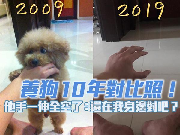 養狗10年對比照!他手一伸全空了「緊握1小罐毛髮」:還在我身邊對吧?