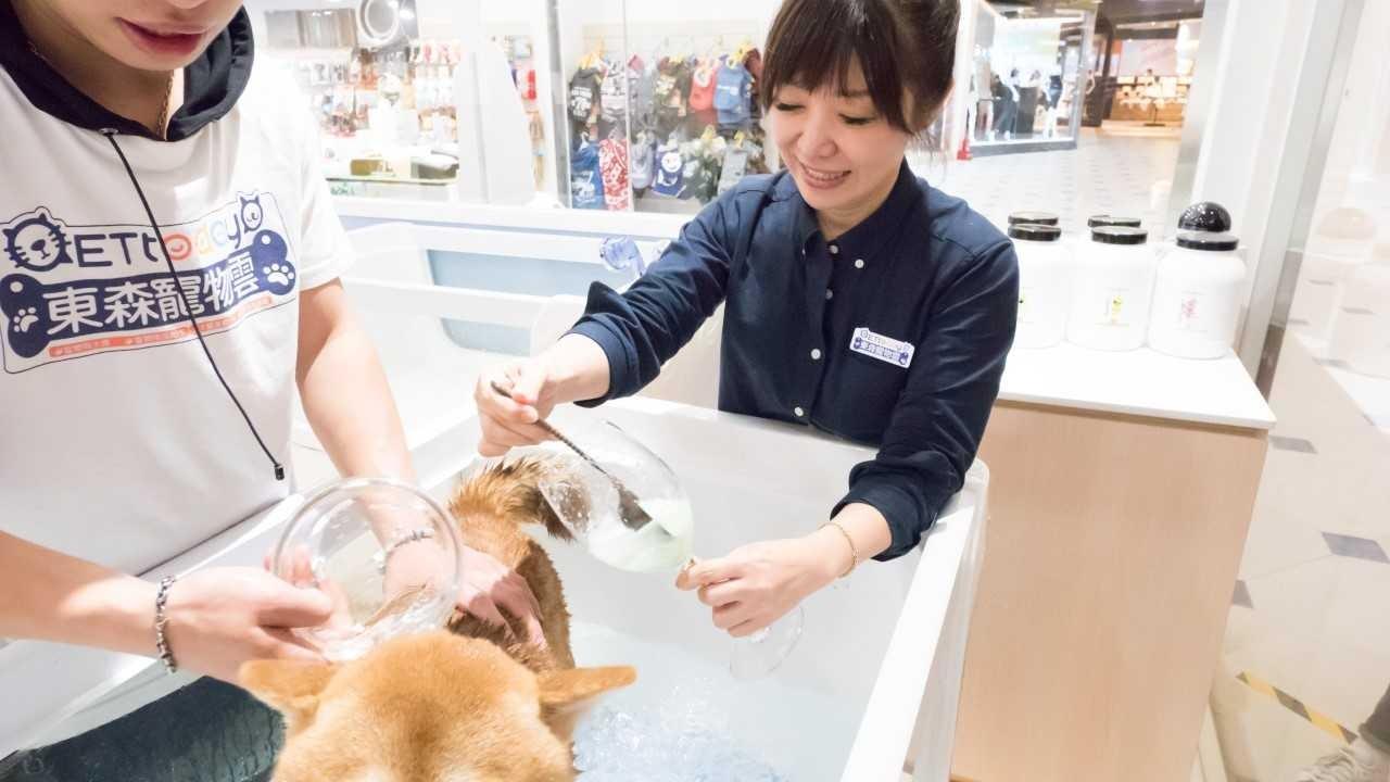 ▲大直ATT概念店寵物美容、洗澡。(圖/王語薇攝)