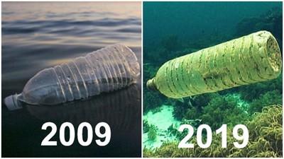 負能量「2009vs2019」!十年過去,熱情榨乾依然窮 垃圾還在水裡漂