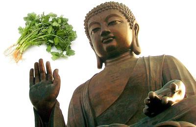佛經記載「吃香菜會下地獄」永無脫身之日 是真的假的?