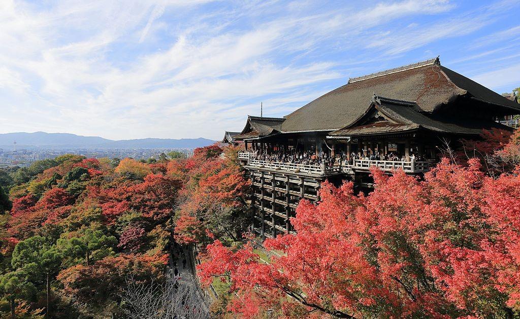 ▲▼日本神社。(圖/阿雜提供)