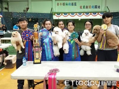 六信寵物科 競賽大放異彩