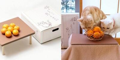 買整箱橘子送「貓咪躺的暖爐桌」 示意圖讓貓奴忍不住掏錢