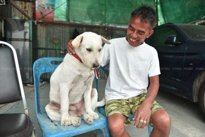 慶祝失蹤狗狗回家! 泰阿伯「擺流水席隨人吃」 鄰:誰能比他更愛狗