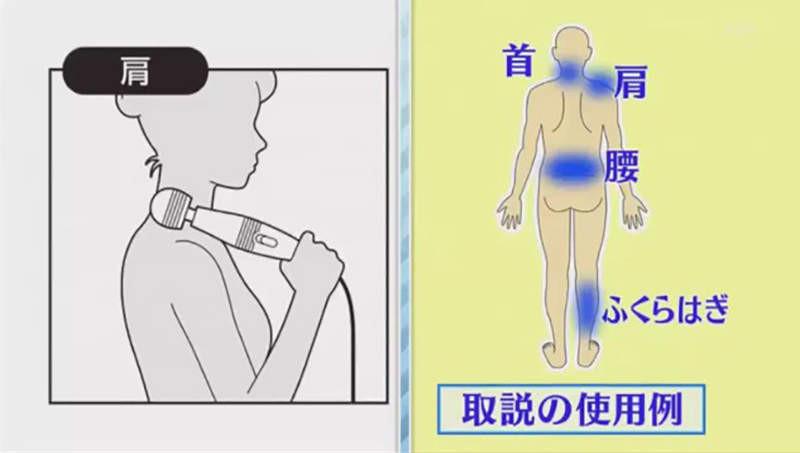 大檸檬用圖(圖/翻攝自節目タモリ倶楽部)