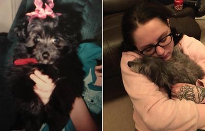 收養狗掃晶片哭了!7年後重逢愛犬