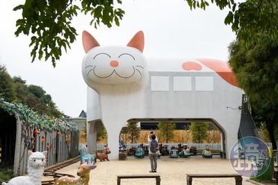 靈感來自園區浪浪 全台最大貓咪車站