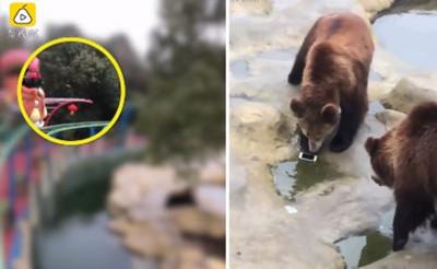 餵棕熊吃蘋果 丟出了蘋果手機