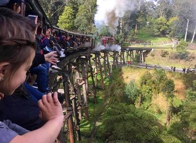華裔司機撞毀澳洲小火車百年傳統