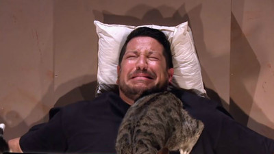 怕貓怕到眼神死!整人節目將他「五花大綁」被貓玩 貓奴一定超羨慕