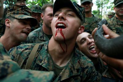 美泰叢林聯合軍演 吞蠍喝蛇血