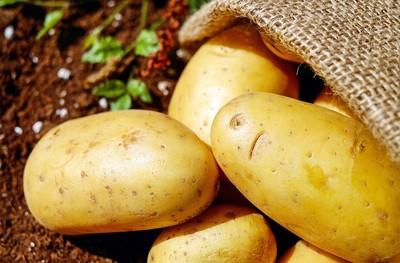 食材發芽能吃嗎? 原來花生、馬鈴薯差很大