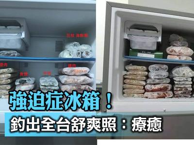 強迫症冰箱整齊擺放!網跪:療癒