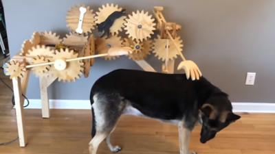 全自動撸狗機!齒輪運轉摸好摸滿,狗狗問號:這什麼鬼?