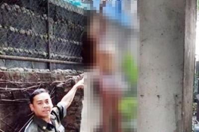 24歲女練瑜珈墜樓 詭異掛鐵網亡