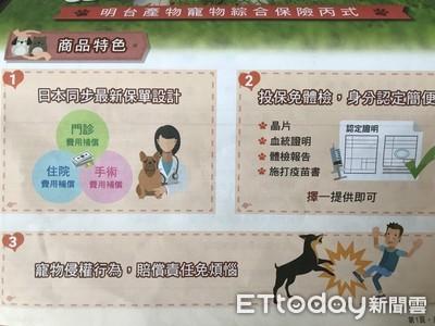 狗貓8成主人願買單 一年寵物險保費2600最受捧場
