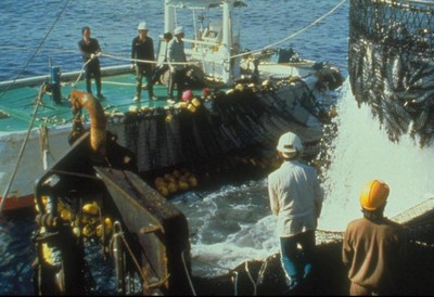 菲籍漁工瘋狂殺人 20名漁工跳海求生