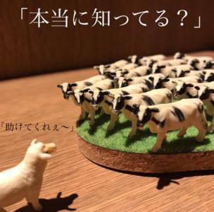 終極殘酷吃到飽!吃燒肉「整群牛」盯著你