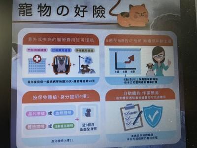 寵物社交圈熱傳 狗狗喵貓醫療險可以「終身續保」