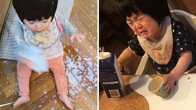三歲女兒=奶製品終結者!新手爸PO照求救:這個家將要被毀滅QQ