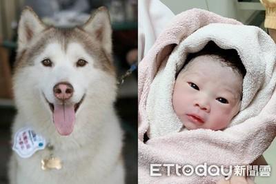 送走愛犬 2年後女兒趕同天報到