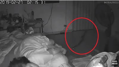 大蟒蛇暗夜滑進房裡 大嘴一張…咬住75歲嬤小腿