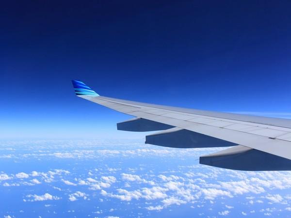 想要免费搭飞机一整年? 美航空开条件:先删光IG照片