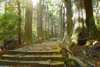 日本紀州半島山海景點大搜查