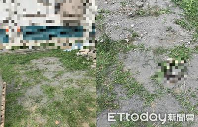 國三女學生墜樓骨折 同學以為有東西掉下