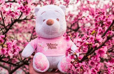 櫻花季限定版小熊維尼限量1萬個