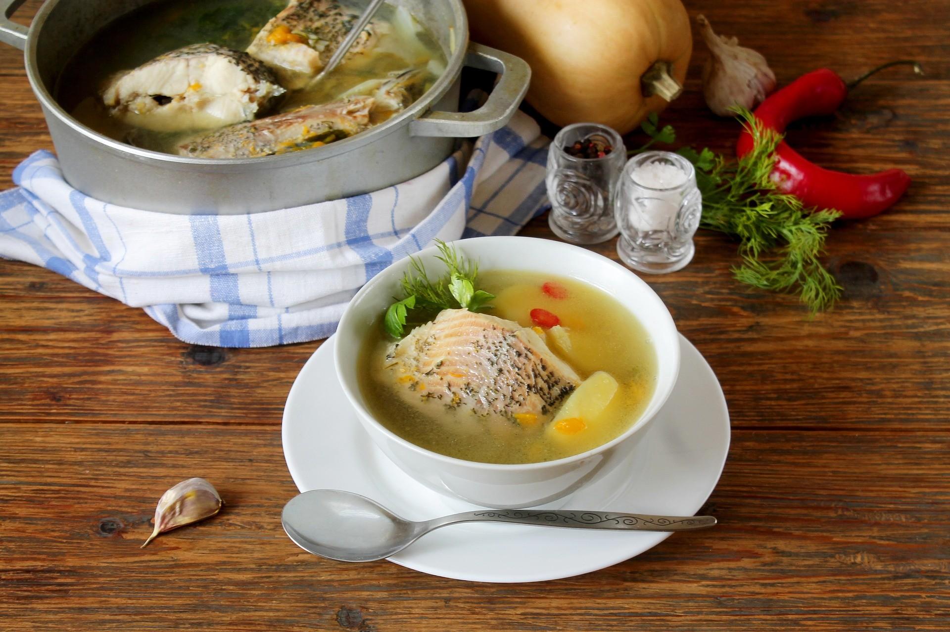 ▲魚湯 。(圖/取自免費圖庫Pixabay)