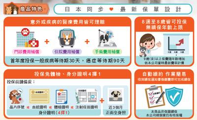 狗狗喵喵8歲前有寵物險 明台產物率先提供終身續保