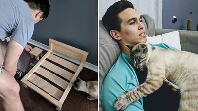 婚前發誓不養貓!老公DIY舒適床架 傻妻一看崩潰:不是給我躺的