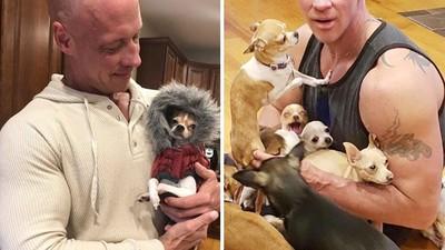 「多虧有吉娃娃」才走出喪妻之痛!大隻佬終生投入小狗救援行動