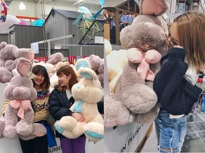 日本好市多100cm巨大兔娃娃萌翻