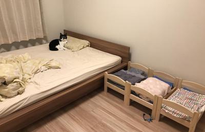 奴才買新窩回家 聖上秒跳雙人床