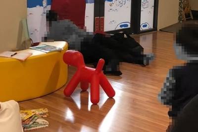 圖書館當旅館!情侶上演「人體麻花捲」入侵兒童室