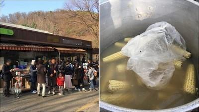 童年回憶也崩壞?韓網友爆知名樂園水煮玉米像狗啃 炸豬排像飼料