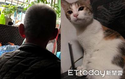 貓咪突尖叫 他醒來驚覺爺爺休克